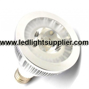 10W COB LED PAR30 38 Degree