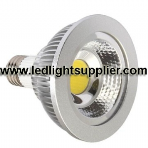10W COB LED PAR30 80 Degree