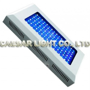 120 Watt LED Aquarium Light