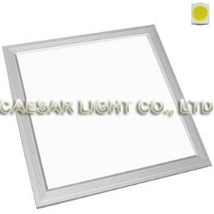 300x300 1210 LED Panel Light