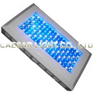 144X2 Watt LED Aquarium Light Panel