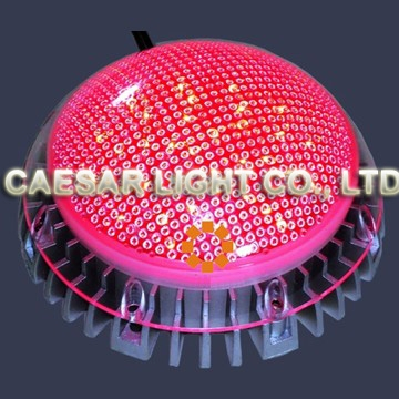 150mm LED Point Light