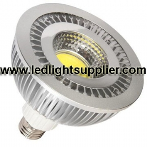 18W COB LED PAR38 80 Degree