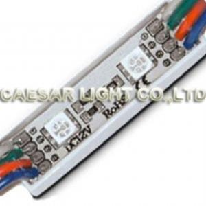 2 RGB SMD LED Module