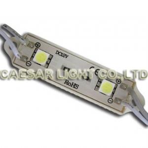 2 SMD LED Module