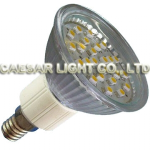24pcs 1210 LED E14 JDR
