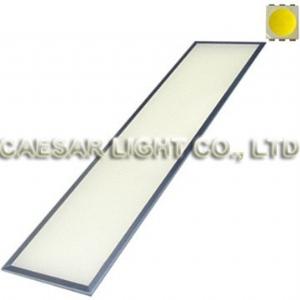 24V 1200x300 LED Panel Light