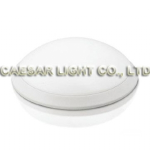24W LED Ceiling Light