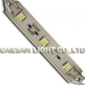 3 SMD LED Module