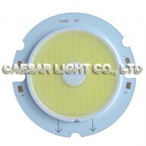 10W 60mm 100 LED COB