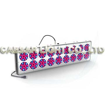 Apollo 18 LED Grow Light 270pcs*3W