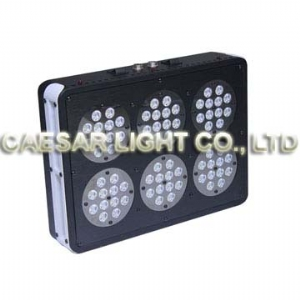 Apollo 6 LED Aquarium Light 72pcs*3W