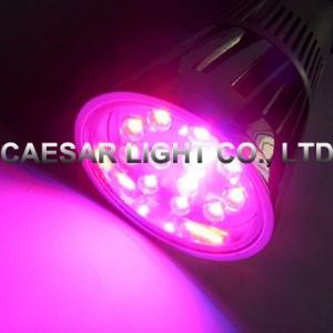 LED Grow Spot