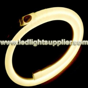 Warm White LED Neon Light