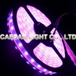Waterproof 300pcs RGB LED Strip