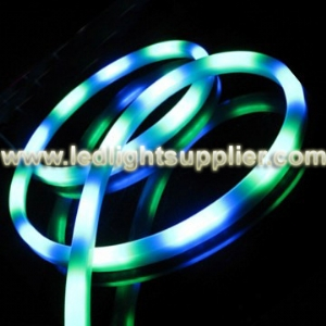 White & Blue LED Neon Light