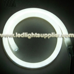 White LED Neon Light